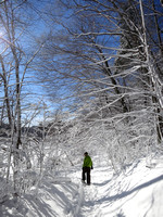 Snowshoeing - February 10, 2013
