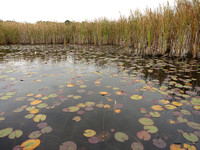 Mendon Paddle - October 5, 2014