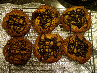 done-florentines