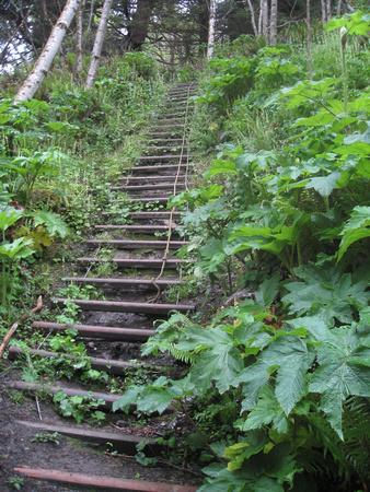 step-climb