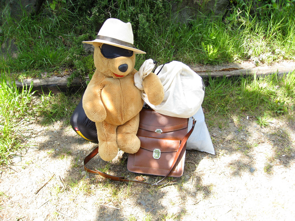 ready-bear