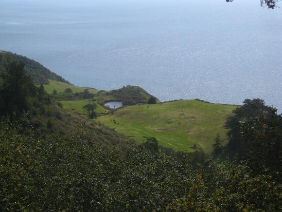 ocean-field