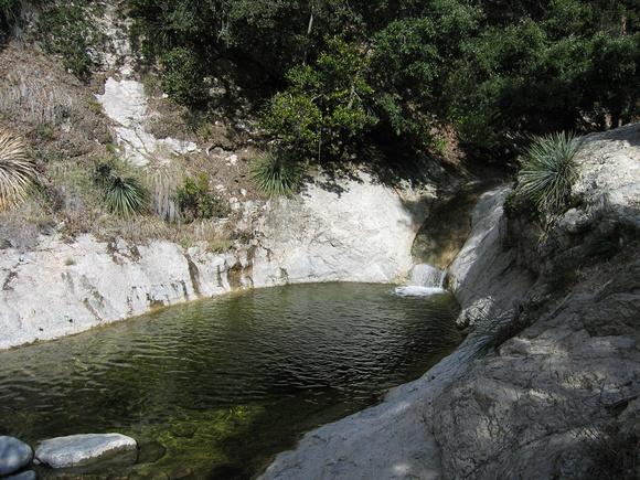 placid-pool