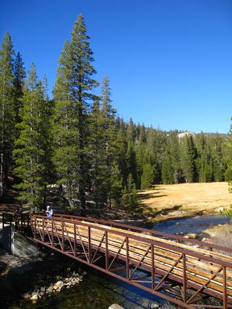 bridge-span
